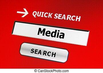 Media web search