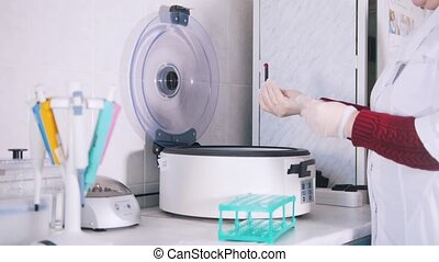 Medical clinic. Nurse putting blood samples in the blood centrifuge