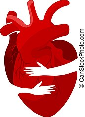 Medical concept of a red heart organ in an embrace. Can be used for posters, icons, web banners and cards