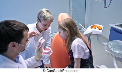 Dentist and his assistant showing a jaw model to a little girl and explaining how it functions