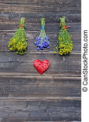 Medical flowers bunches collection on old wooden wall
