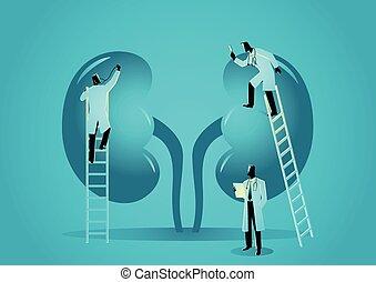 Medical Graphic Hematologist