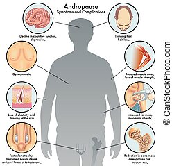 andropause - medical illustration of the symptoms and ...