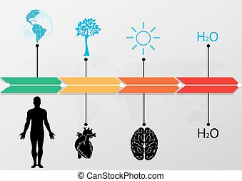 Medical Infographic set,world infographic timeline. illustration vector