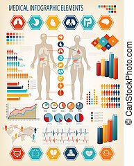 Medical infographics elements. Human body with internal...
