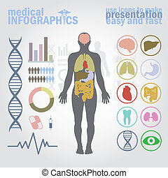 Medical infographics. Presentation set. Human body with ...