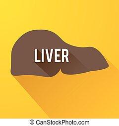 Medical Internal Organ Background