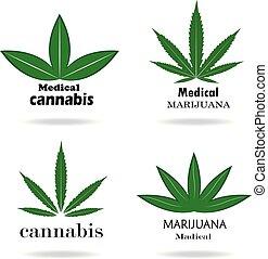 Medical marijuana. Cannabis - Illustration