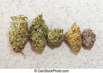 Medical marijuana - medical marijuana and recreational use ...