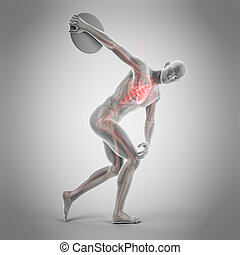 a discus thrower - medically accurate 3d illustration of a...