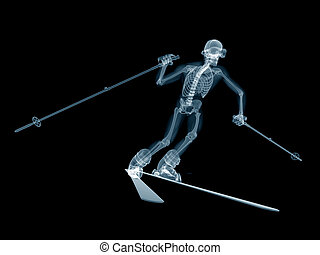 a skier - medically accurate 3d rendering of a skier