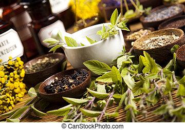 medicina erbe, naturale, colorito, tono
