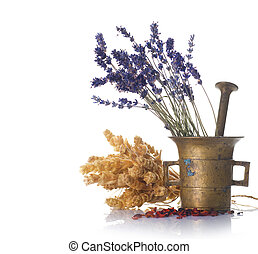 medicina herbácea, conceito
