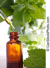 medicina herbaria, con, cuentagotas, botella