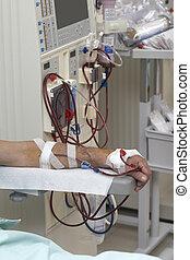 medicina, salud, diálisis, riñón, cuidado