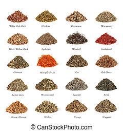 Medicinal and Magical Herbs - Medicinal and magical herbs...