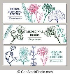 medicinal, banderas horizontales, hierbas