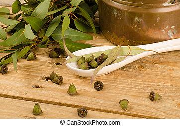 Medicinal eucalyptus - Still life displaying eucalyptus as a...
