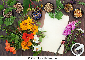 Medicinal Herb and Flower Selection - Medicinal herb and...