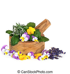 Medicinal Herbs and Flowers