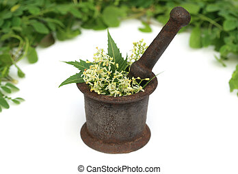 Medicinal herbs on a vintage mortar over white background