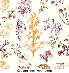 Medicinal herbs seamless pattern orange and brown