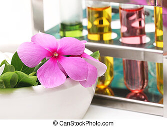 Catharanthus roseus in analytical laboratory