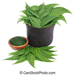 Medicinal neem leaves with crushed paste in a bowl over...