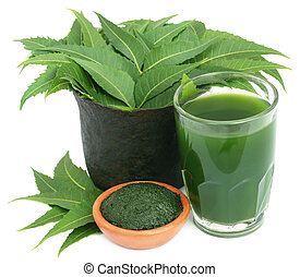 Medicinal neem leaves with extract and ground paste over...