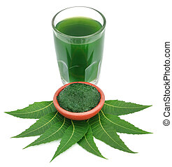 Medicinal neem leaves with ground paste and extract in a...