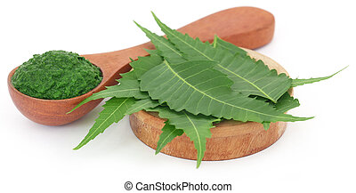 Medicinal neem leaves with ground paste over white...