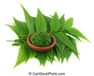 Medicinal neem leaves with paste on a brown bowl