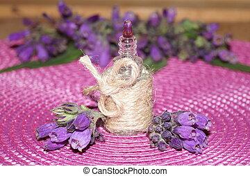 Medicinal plants-comfrey, blackwort