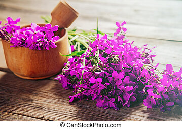 Medicinal willow-herb flowers in mortar - Willow-herb...