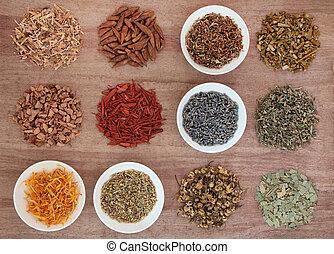medicinal, y, mágico, hierbas