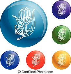 Medicine calendula icons set vector
