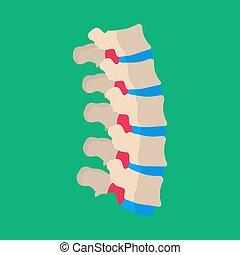 medicinsk, sjuk, vektor, mänsklig, tålmodig, rygg, baksida, icon., skelett, ben, lumbal, kolonn, skiva, ryggsmärtor, sjukdom, ryggkotor
