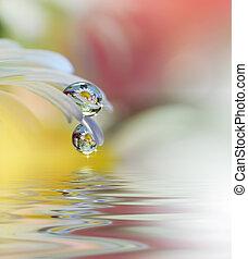 medico, fondo., chamomile., natura, bello