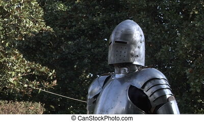 medieval fighting 11 - Fighting medieval knights