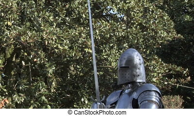 medieval fighting 14 - Fighting medieval knights