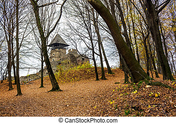 medieval fortress in autumn leafless forest. Nevytsky castle...