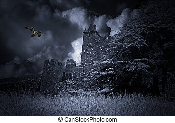 Medieval - Old and mysterious medieval castle with eagle...