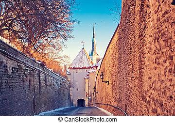 Medieval street in Tallinn