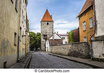 Medieval Wall In Tallinn