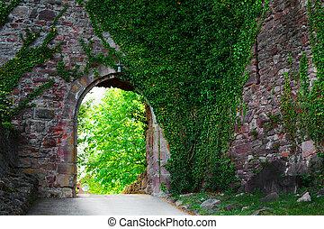 medieval, wall street, cubierto, estrecho, hiedra