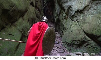 Medieval warrior in the woods - Rearview shot of a spartan...