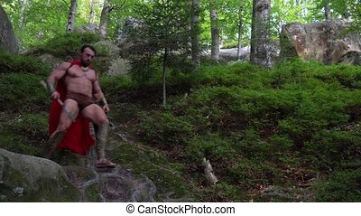 Medieval warrior in the woods - Low angle shot of a handsome...
