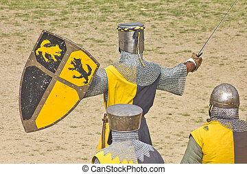 Medieval warriors