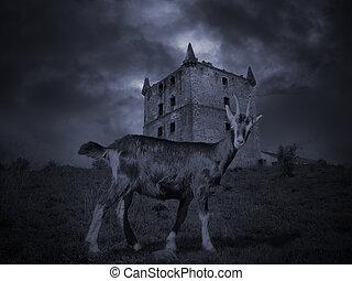 medievale, misterioso, goat