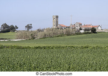 medievale, paesaggio rurale